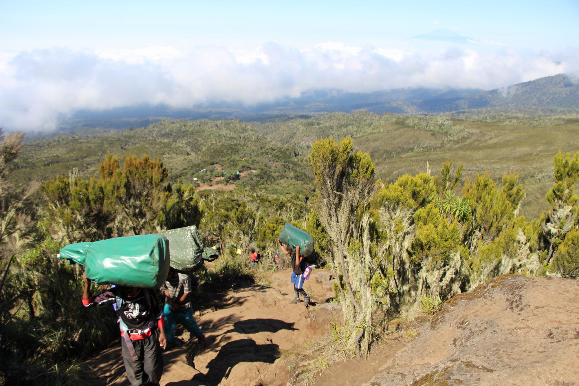 Elhagyva a Machame Camp-et - háttérben a Meru Peak