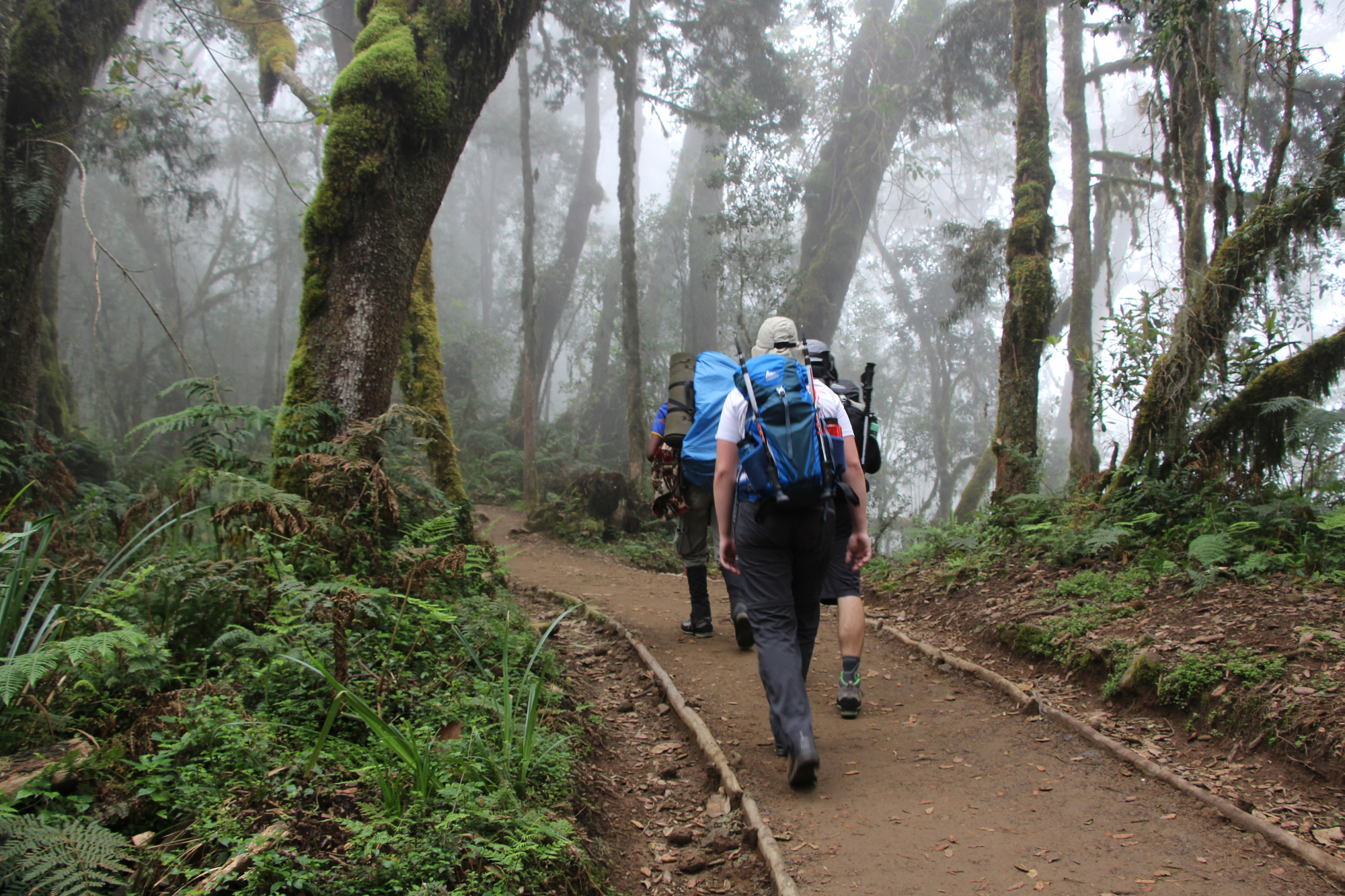 machame_kilimanjaro